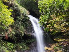 穴吹川上流の滝
